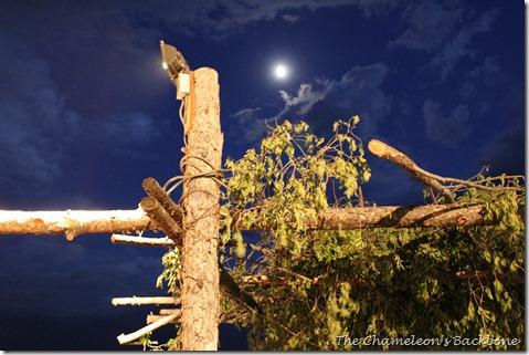 Taos Pow Wow 10