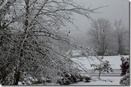 Winter in October 3